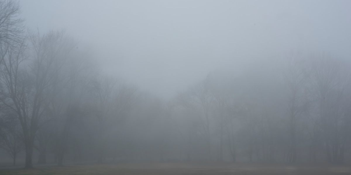 Breakdown: Why fog and clouds are different