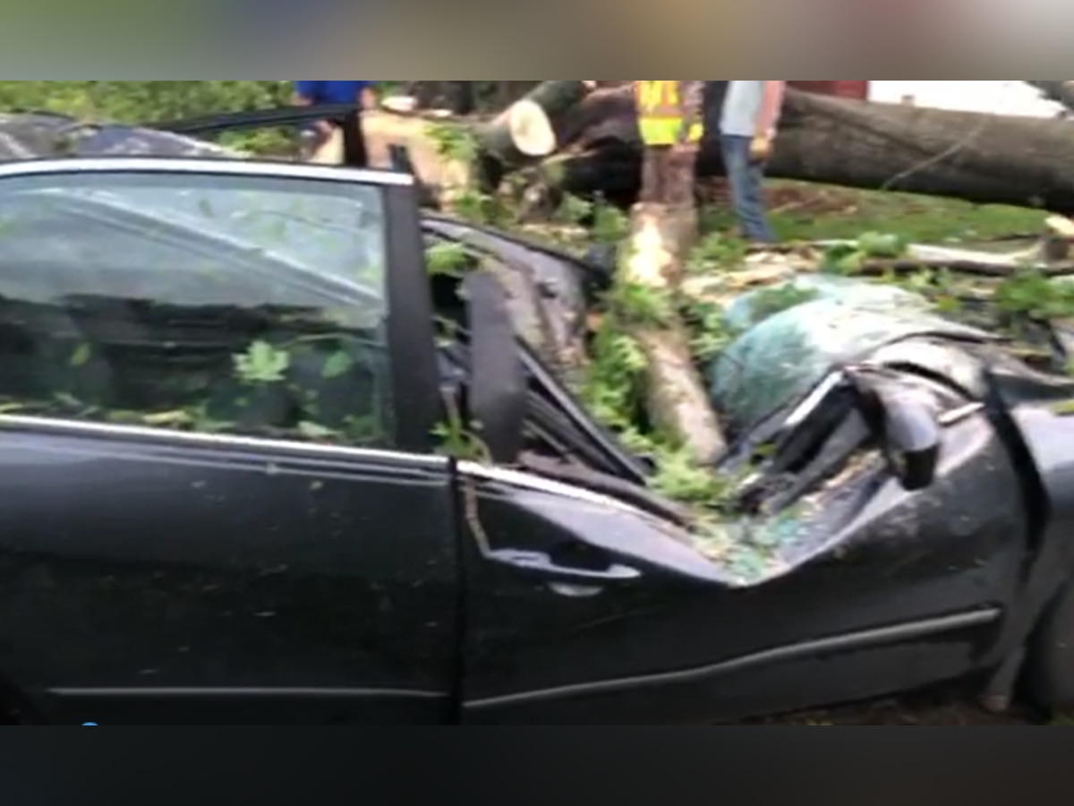 Tree falls on car during Mid-South storm