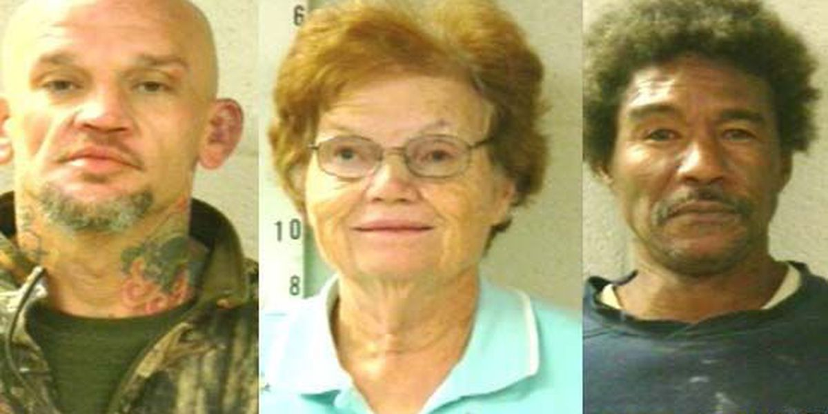 Undercover operation results in 25 arrests in Tipton County