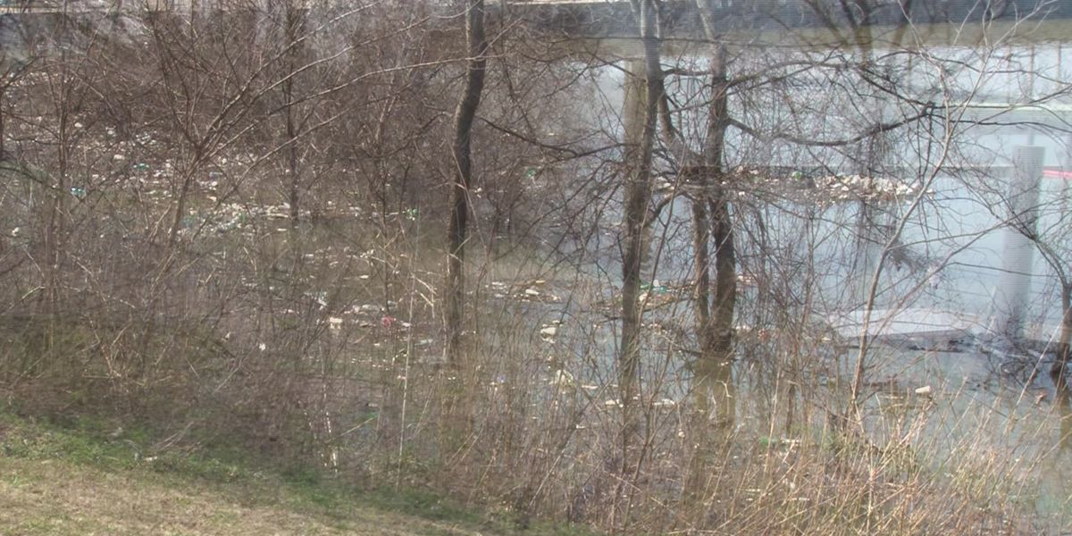 Volunteers wanted to clean Wolf River Harbor