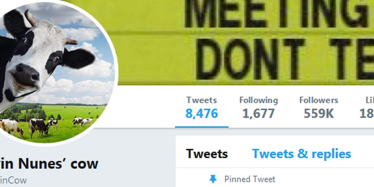 Parody account soars in popularity following lawsuit