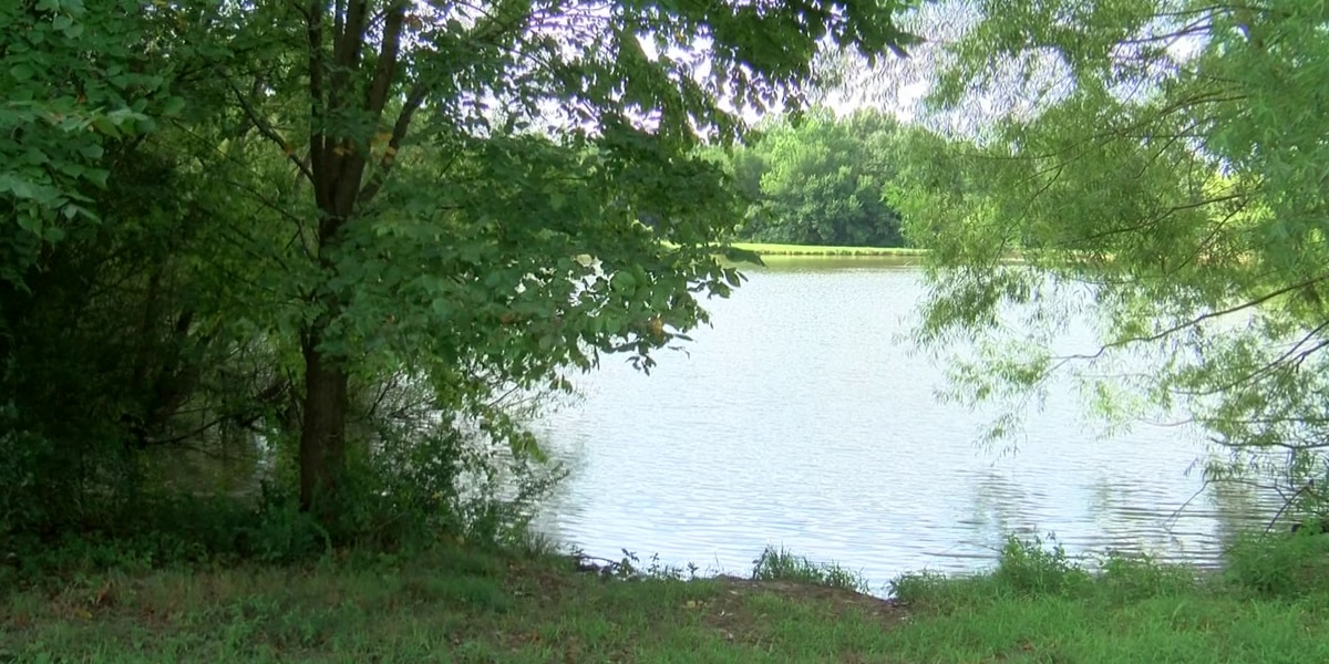 Shelby Farms testing lake for toxic algae, confirming 2 dogs died after playing in water