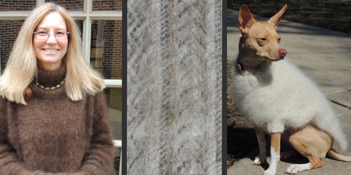 Shed Happens: Turn dog fur into yarn with 'Knit Your Dog'