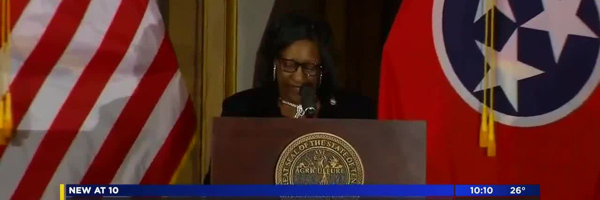 Democrats deliver rebuttal to Gov. Lee's State of the State
