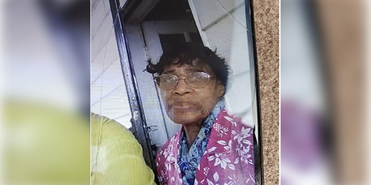 SCSO says leads have dried up in case of missing 85-year-old woman