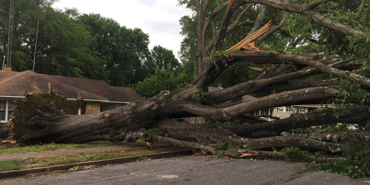 Shelby County granted federal disaster assistance for Memorial Day weekend storms