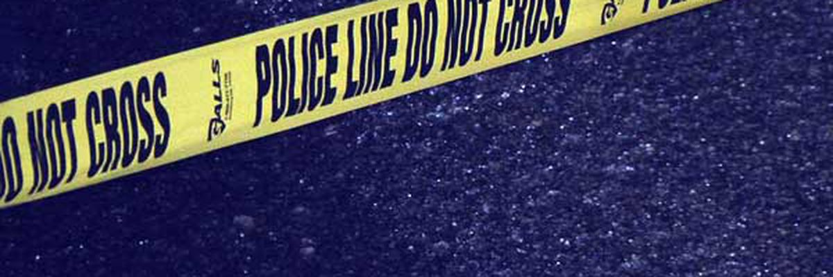 Deputies investigating Panola County homicide