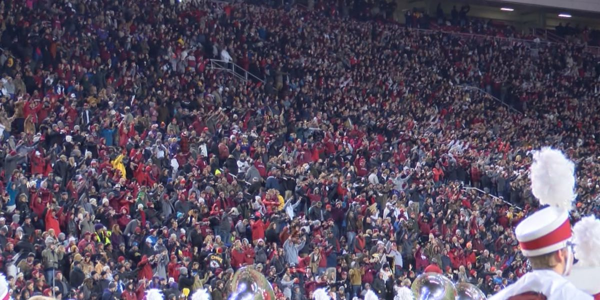Wine, beer to be sold at Razorback games