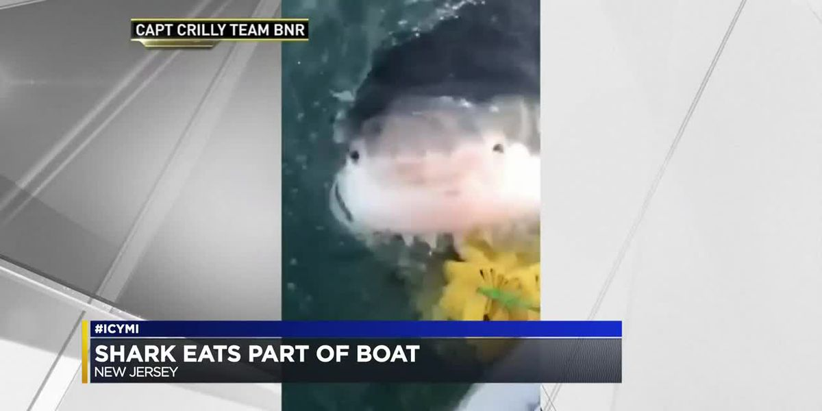 #ICYMI 6-20-2019: iPhone repairs, great white shark spotting, and a Jeopardy! donation