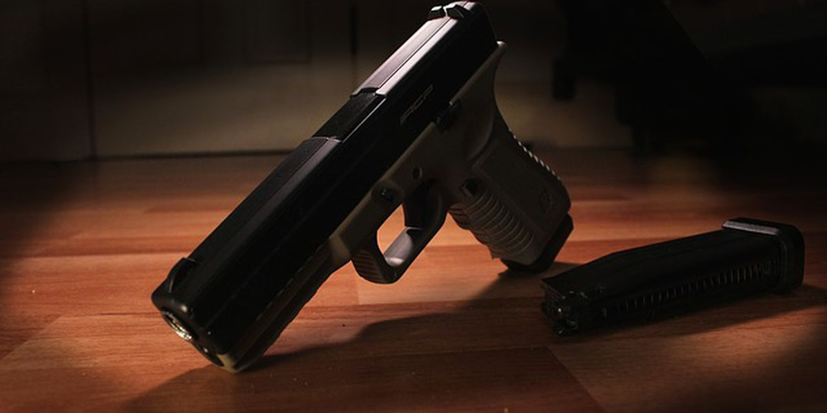 Study ranks states most dependent on gun industry