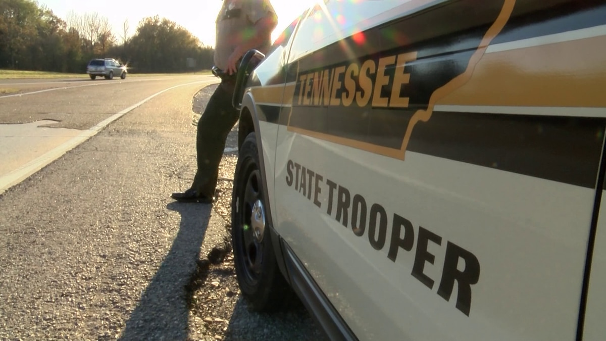 THP's 'Operation Grizzly Bear' sees great results
