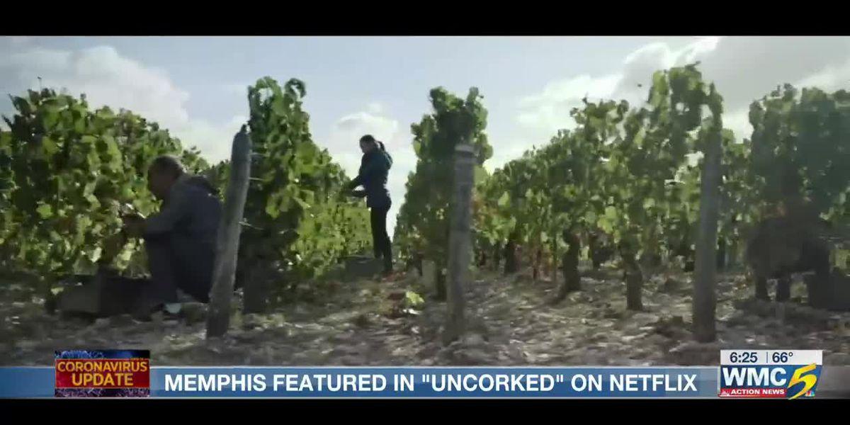 Memphis-based film 'Uncorked' makes Netflix's Top 10 list
