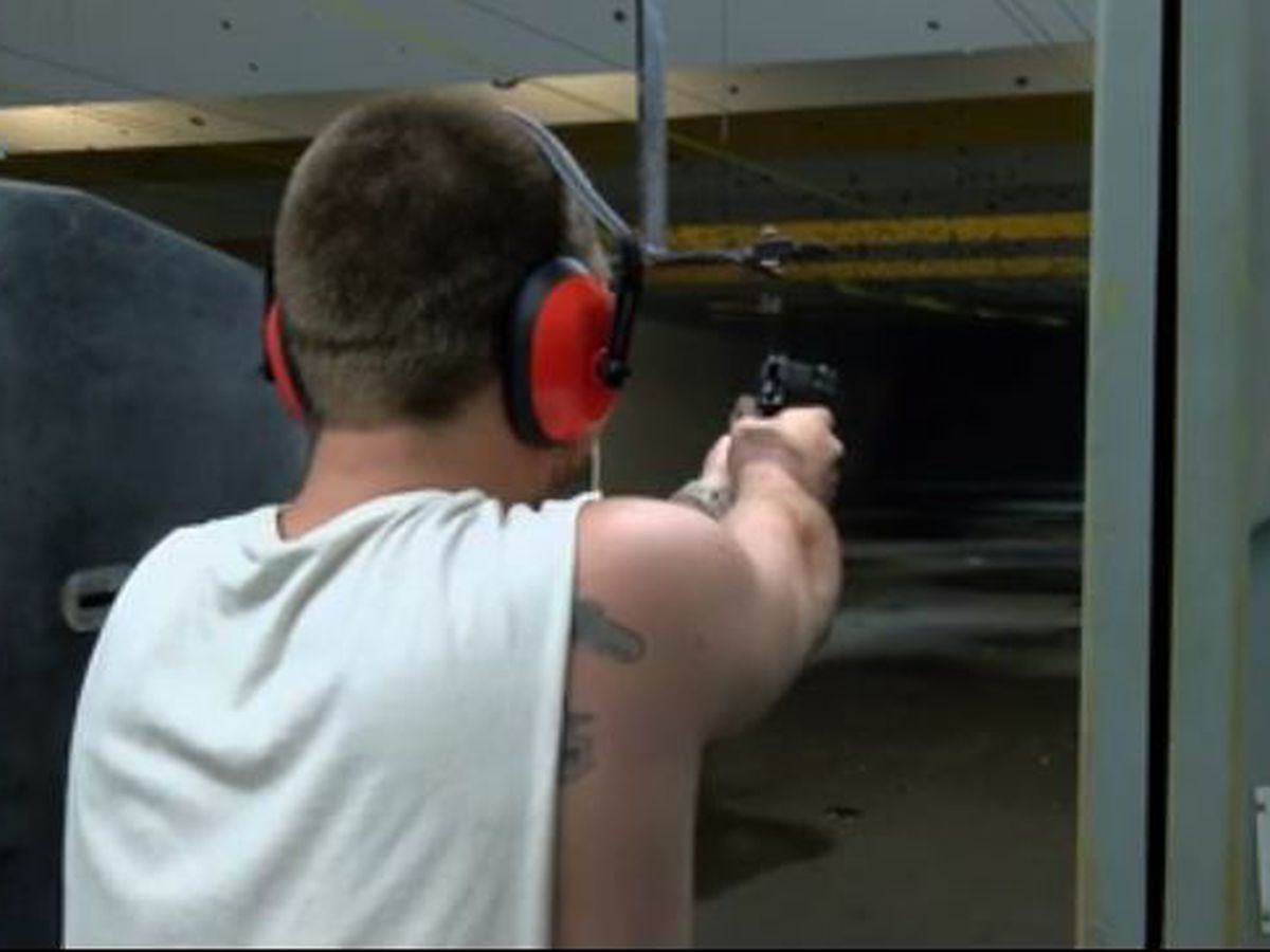 New law allows online course for conceal carry permit