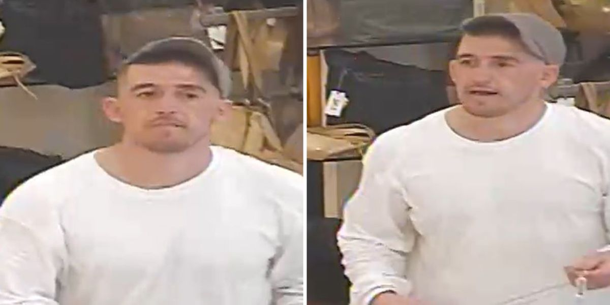 Diamonds stolen from Collierville jewelry store