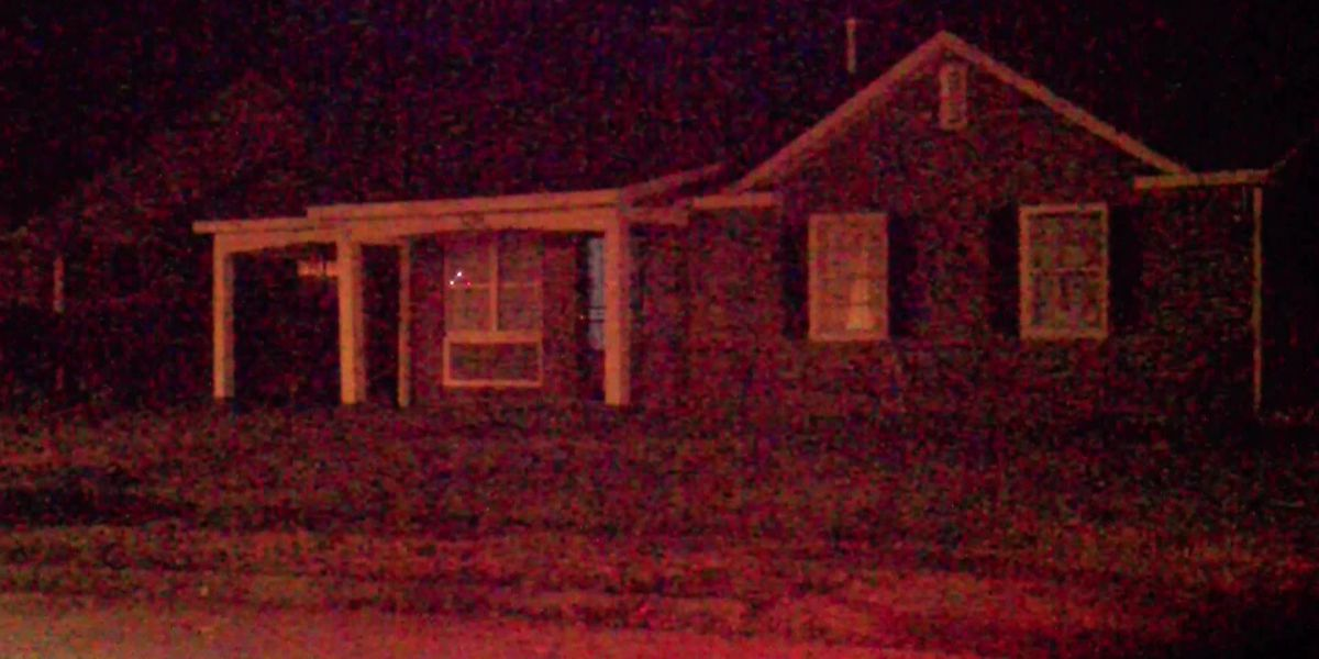 Man arrested on arson, domestic assault charges