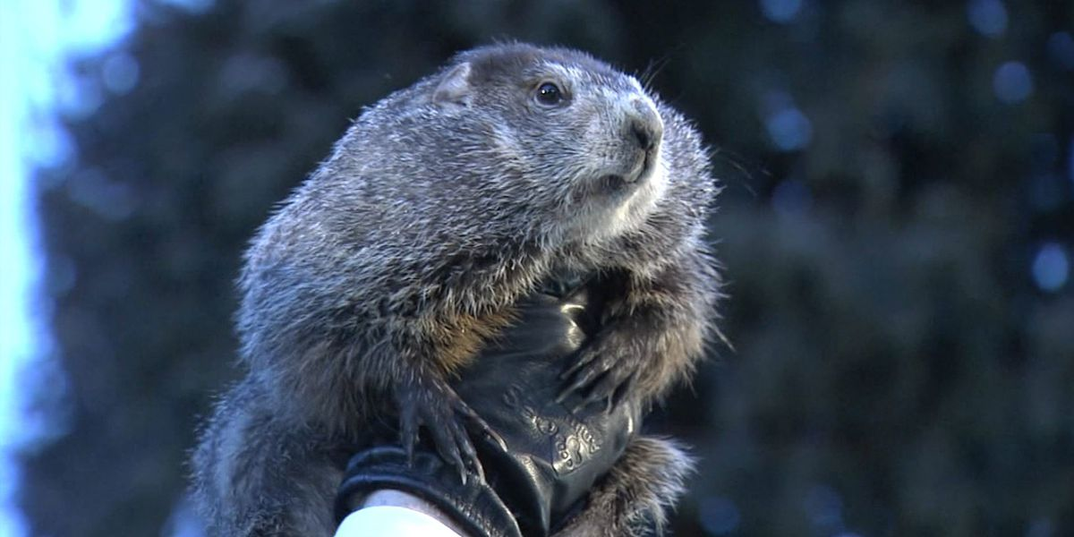 Breakdown: Happy Groundhog Day! Why he's wrong, more than right
