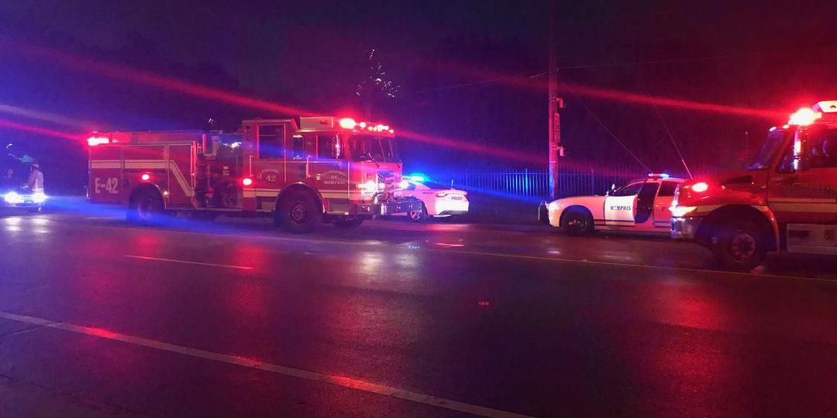 Driver in custody after hitting police car