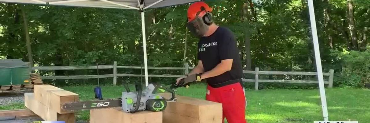 Bottom Line: Best chainsaws for fall cleanup