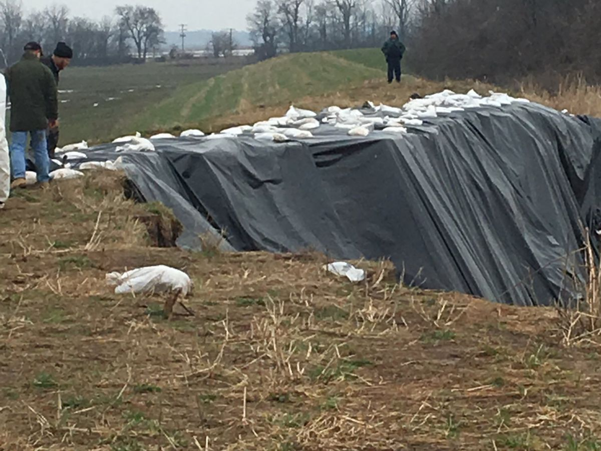 Tarps laid over compromised levee