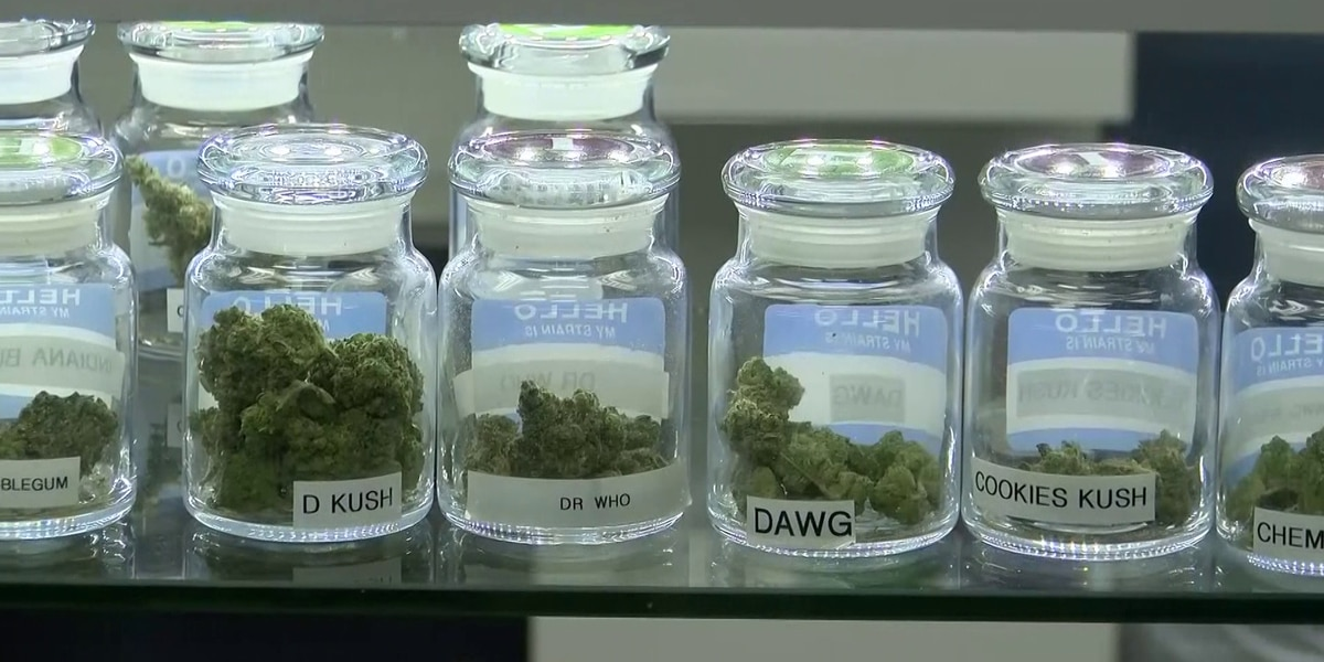 Group of Mississippi physicians come out in support of medical marijuana initiative
