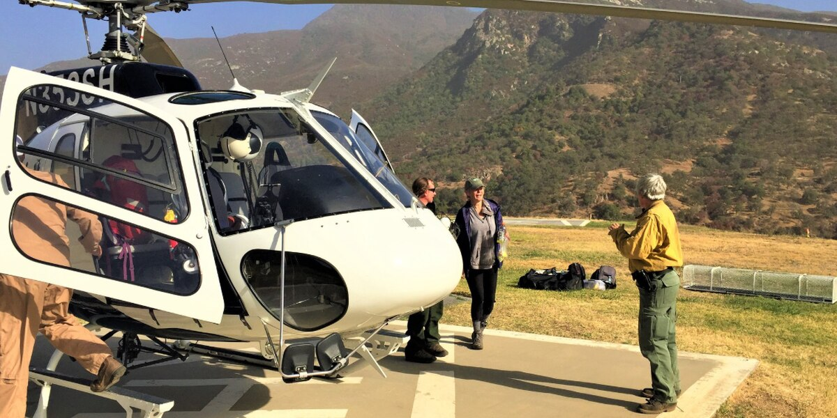 Mississippi woman found safe in Sequoia National Park