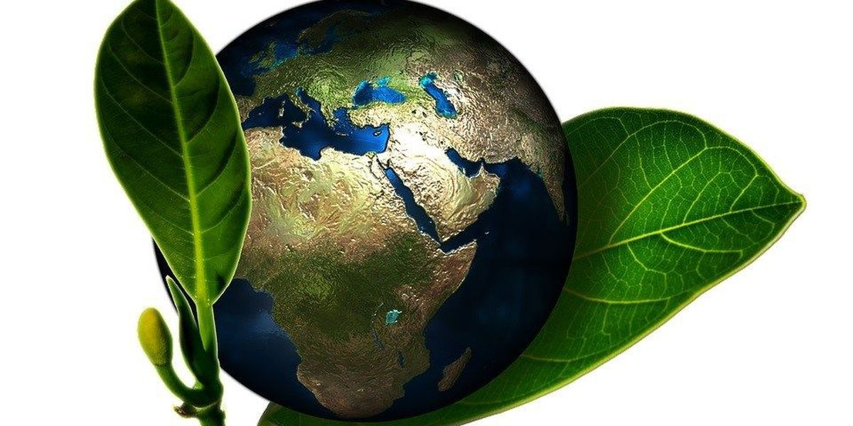 WalletHub releases 2017 Greenest States list