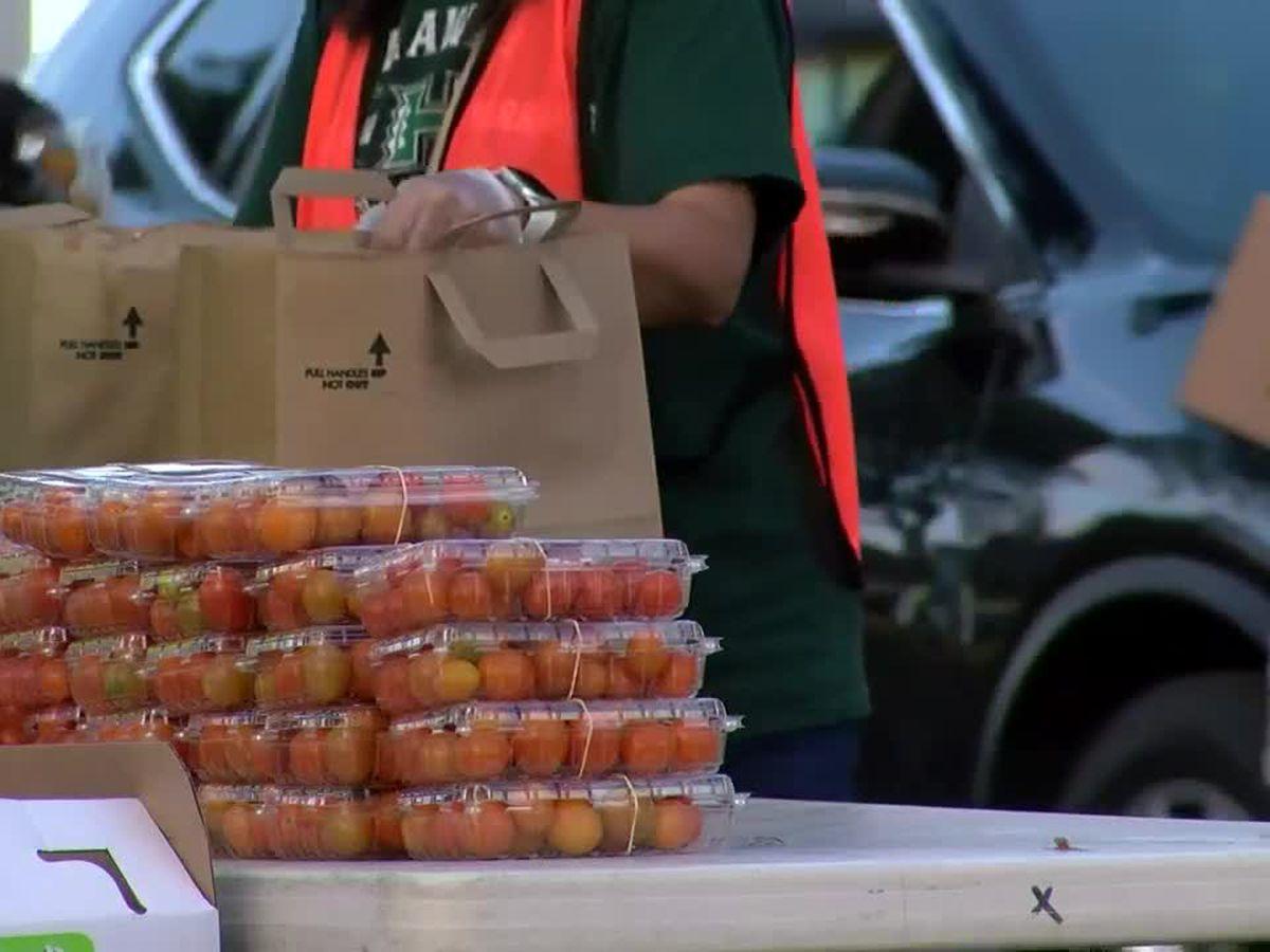 MLGW postpones mobile food pantry due to severe weather threat