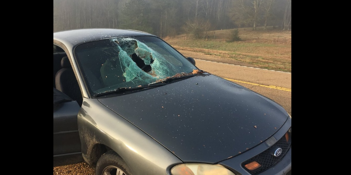 Log smashes through windshield of car in Mississippi