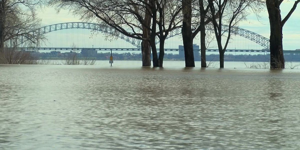 Levees responding well to rising Mississippi River