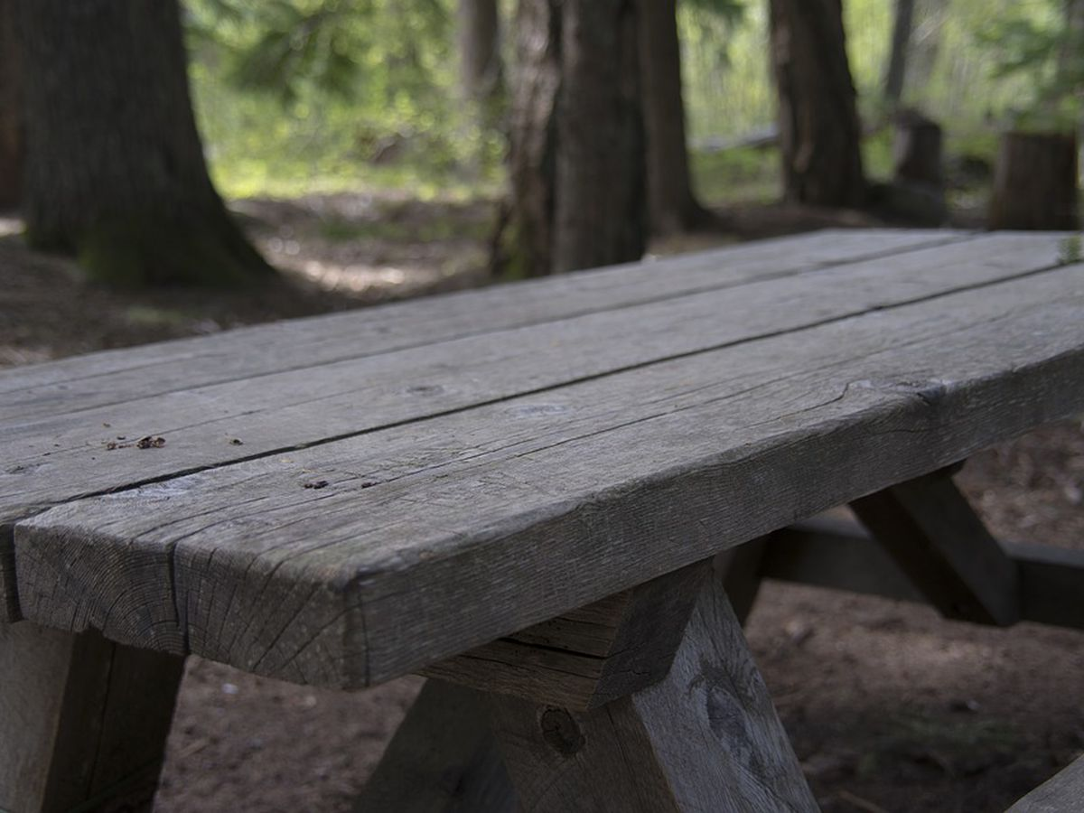 Memphis In May to build world's longest picnic table