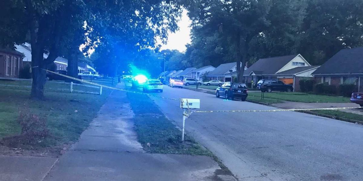 Girl, 4, critical after accidental shooting