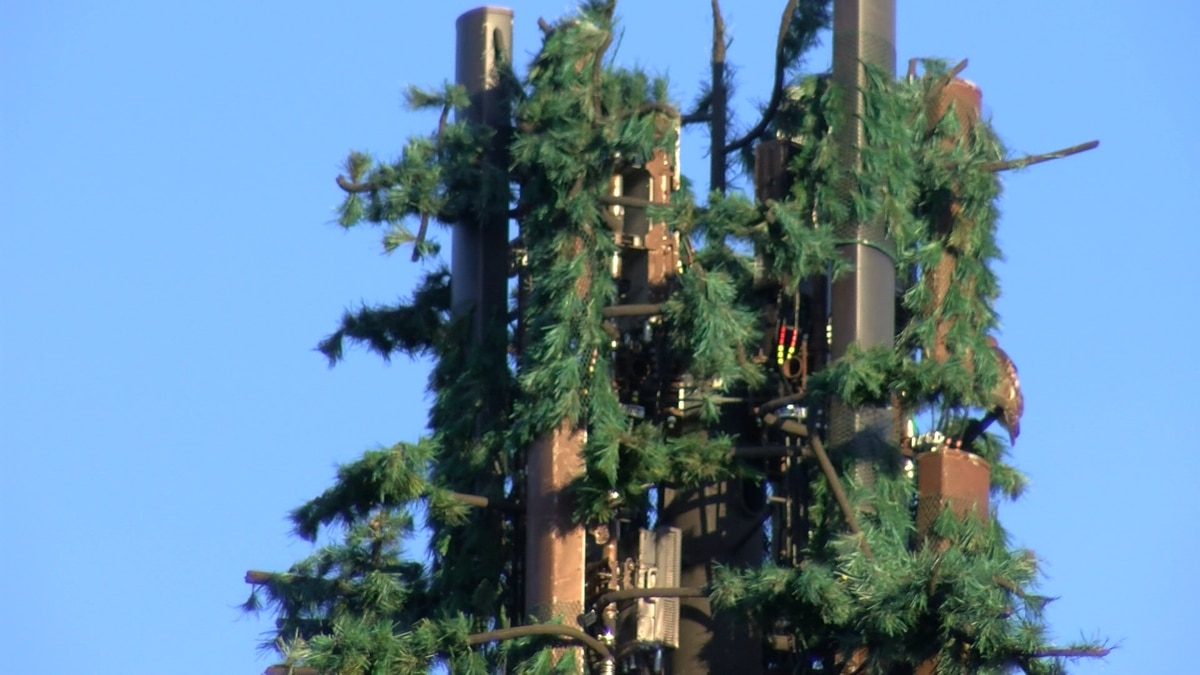 New push for Germantown cell tower raises new concerns