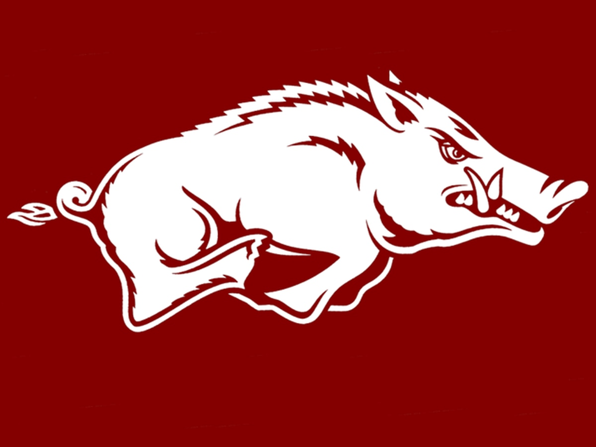 Arkansas' Morgan named Bednarik Player of the Week