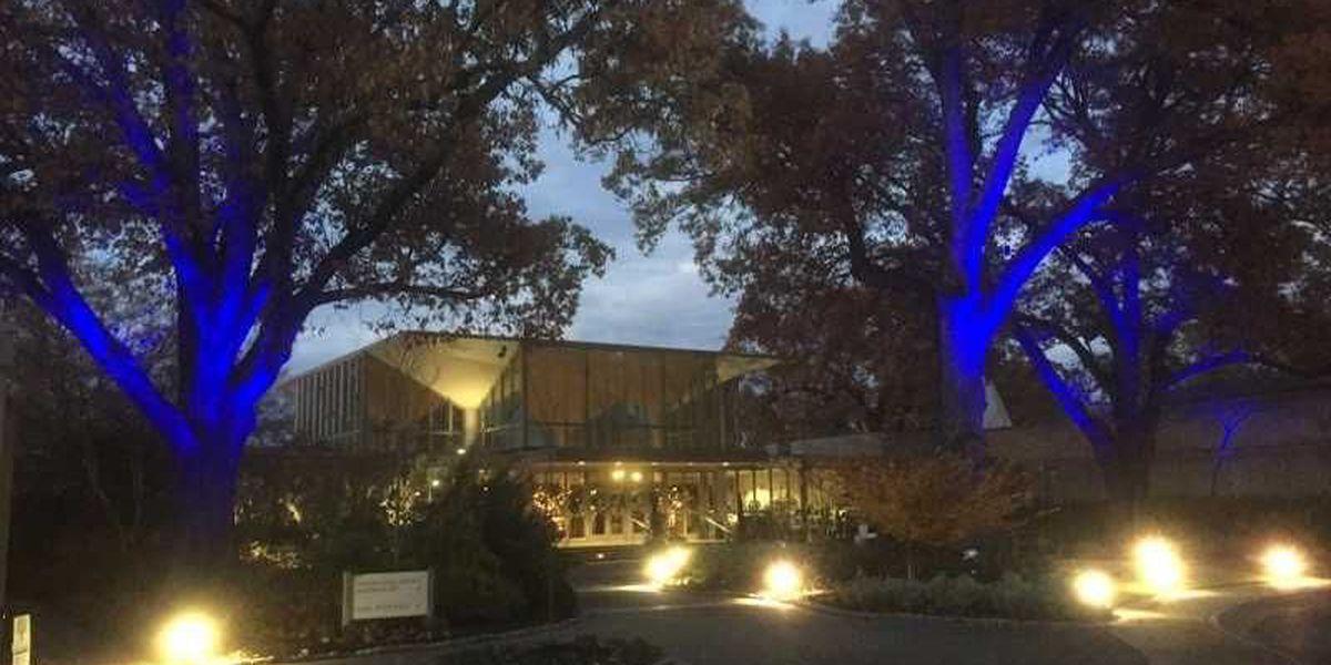 Memphis Botanic Garden names new board leadership