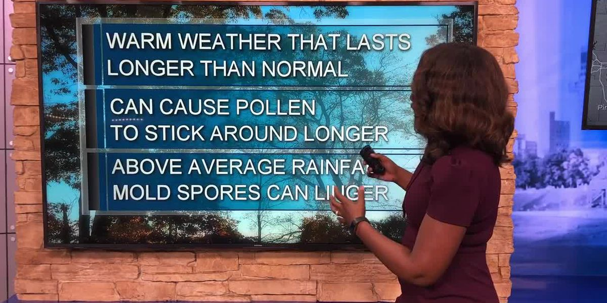 Why weather can worsen fall allergies