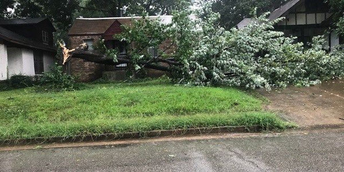 MLGW: Power outages should be resolved by Sunday