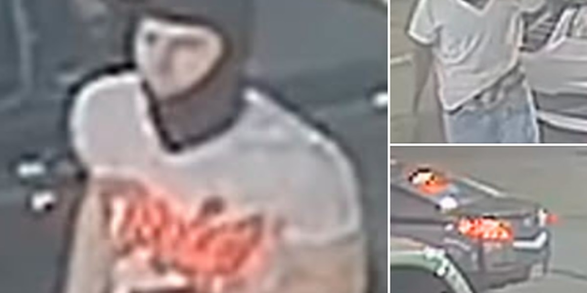 Thieves steal elderly man's van after helping him with a boost