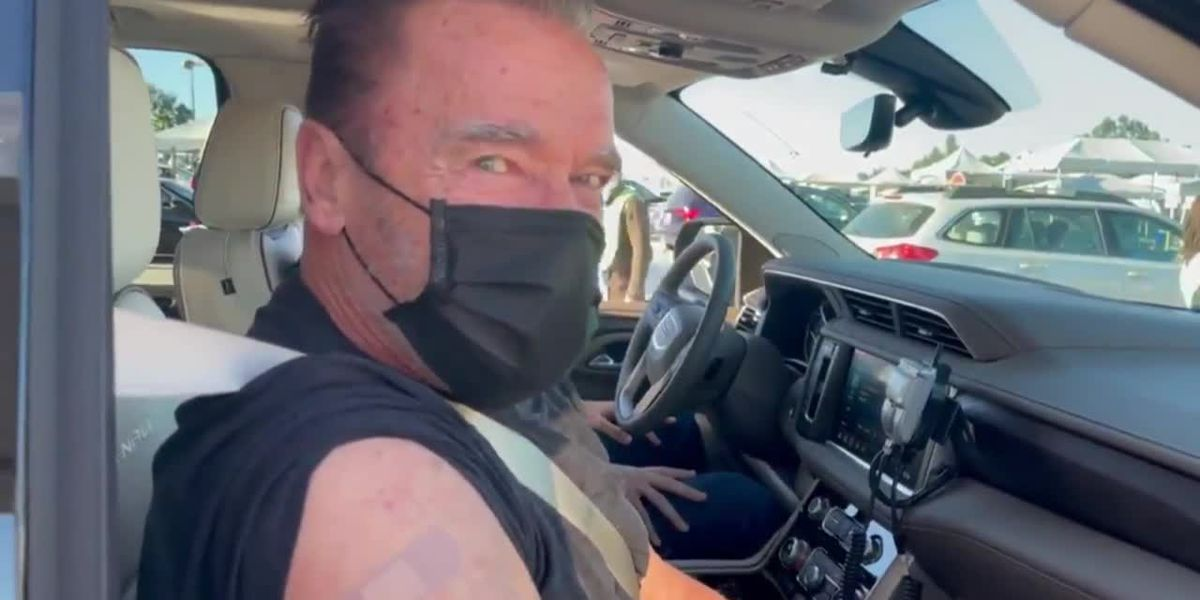 Schwarzenegger on COVID-19 vaccine: 'Come with me if you want to live'