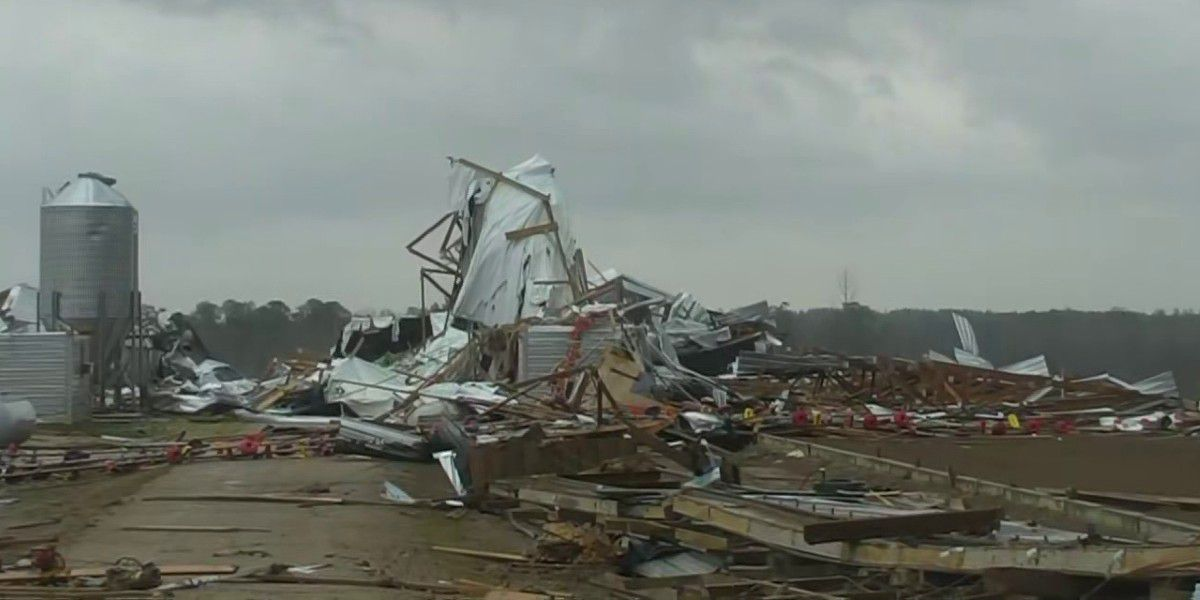 Damage reported in Wayne County after tornado