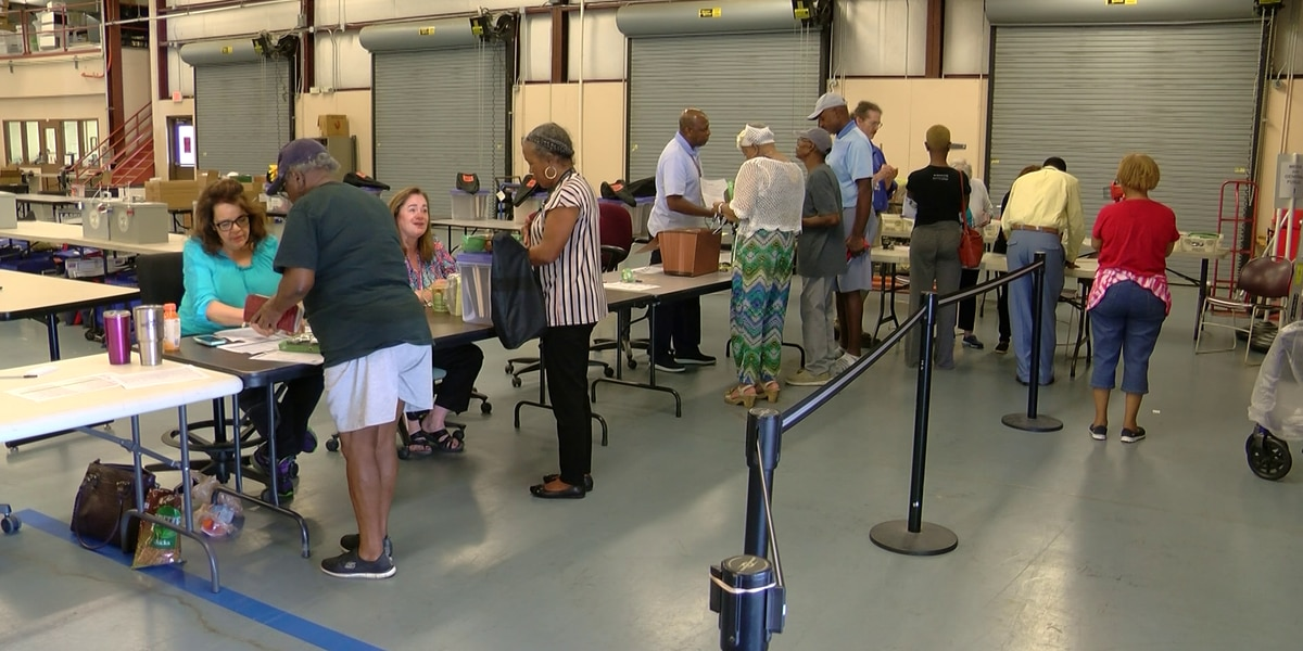 Voters head to the polls Thursday in Memphis municipal election