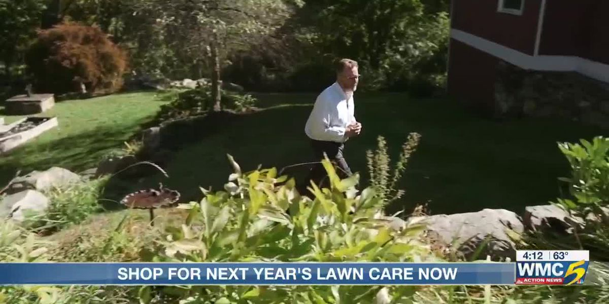 Consumer Reports suggests shopping for next year's lawn care service now