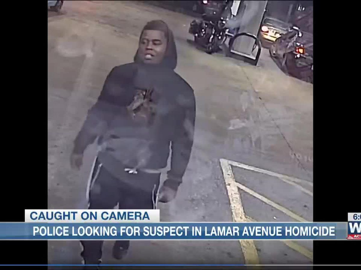MPD looking for suspect in fatal shooting on Lamar Ave.