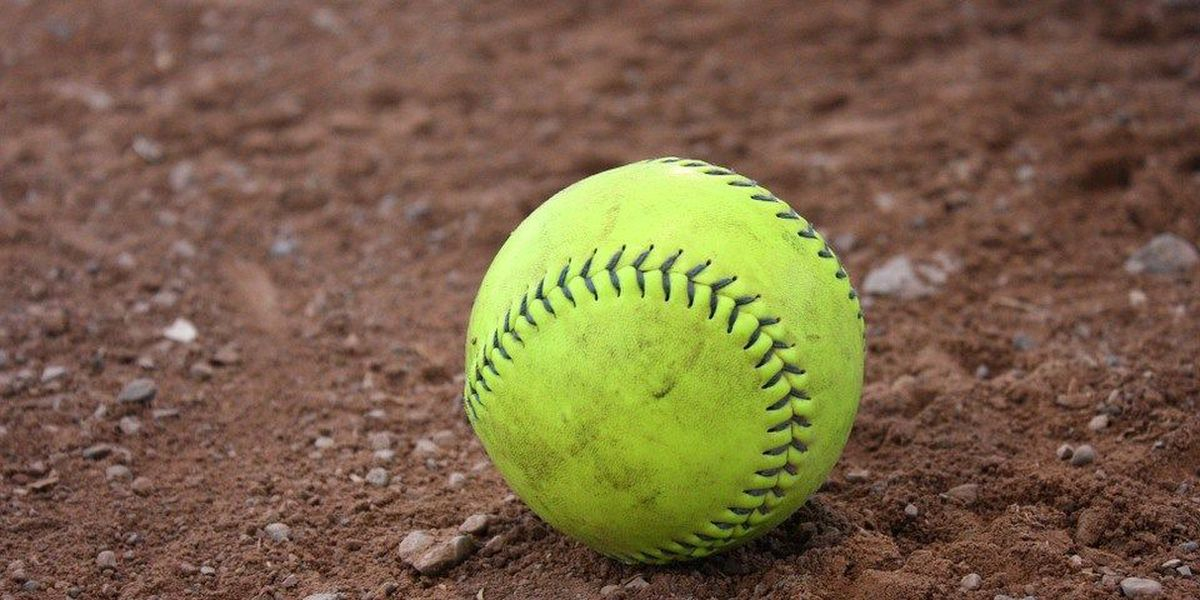 Tigers softball splits games against Austin Peay