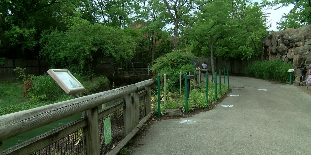 TN House to vote on bill permitting alcohol sales at Memphis Zoo
