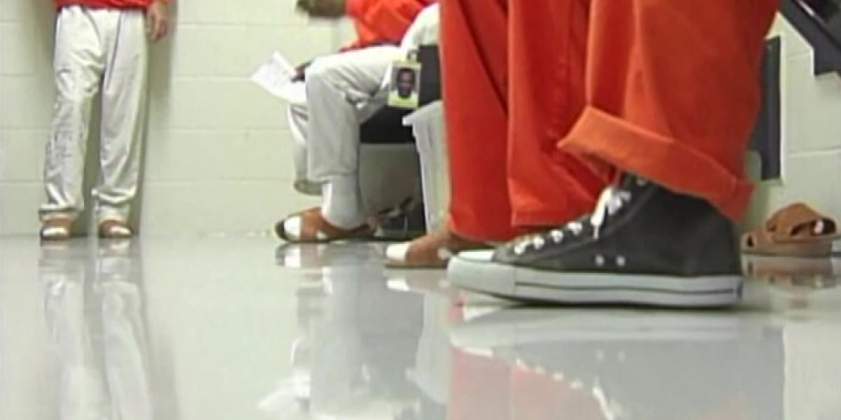 Senator pushes for low-level felons to have voting rights