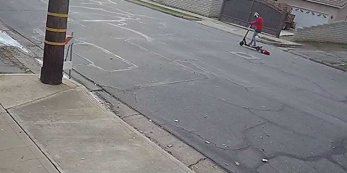 Police recommend charges against woman seen dragging dog with electric scooter