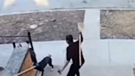 Teen armed with broom saves children from dog attack