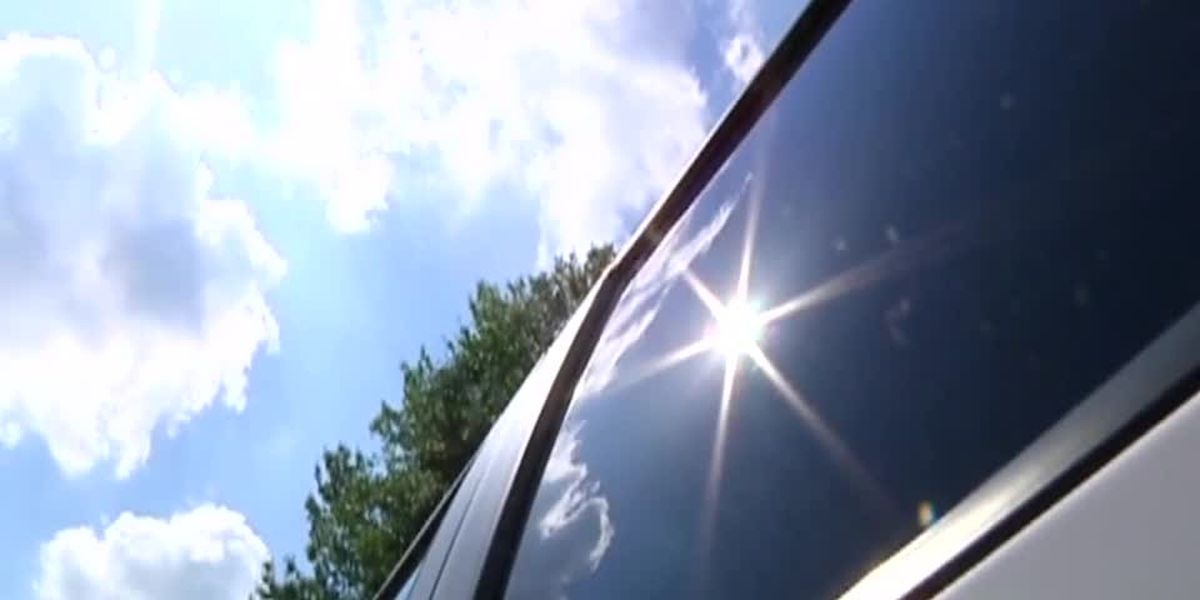 Breakdown: How Hot It Get's In Your Car & Why It Can Be Deadly