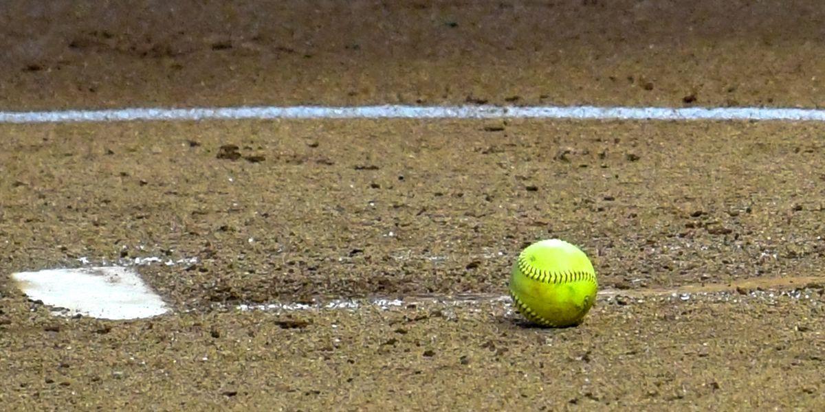 Bulldogs spoil Tigers' softball home opener