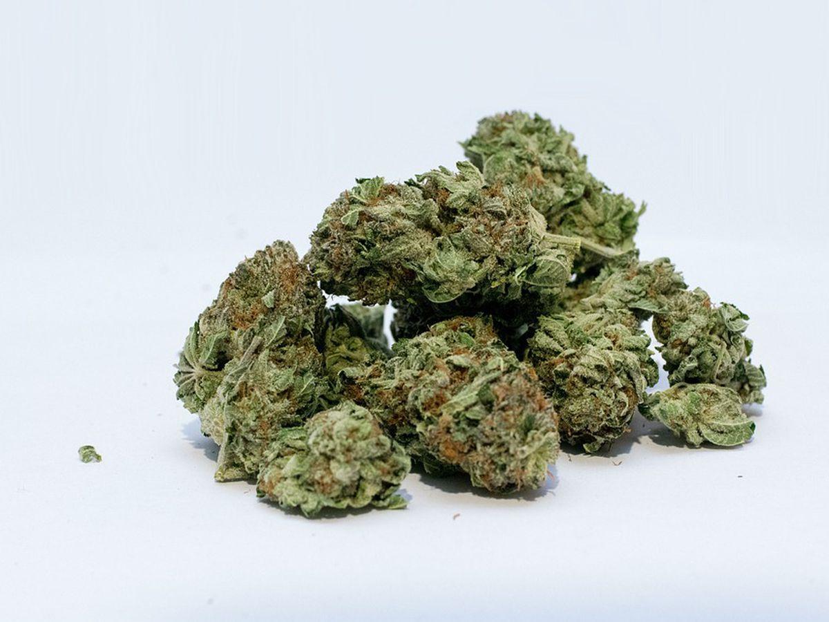 Arkansas Dept. of Health to reissue medical marijuana cards